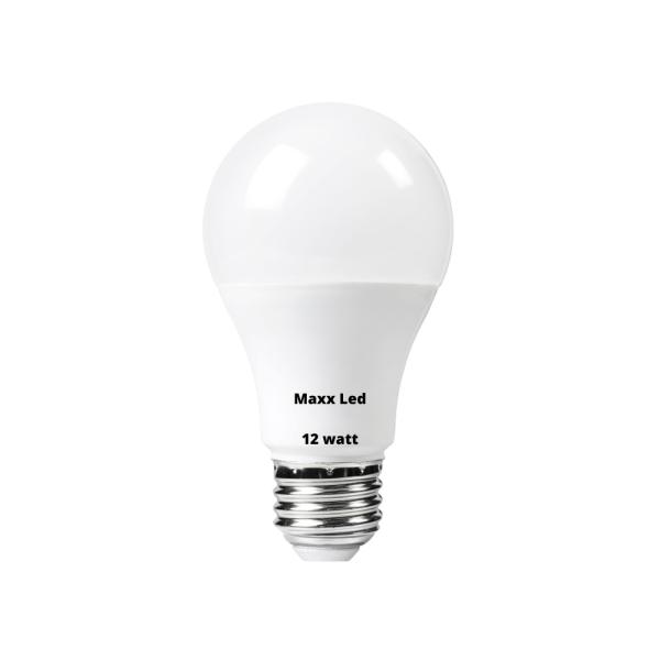 12 watt Led Bulb Price in Pakistan